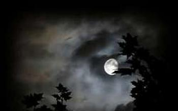 Notte senza stelle
