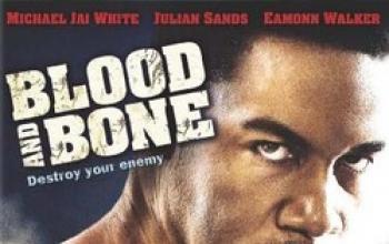 08. Blood and Bone: un ritorno alle origini