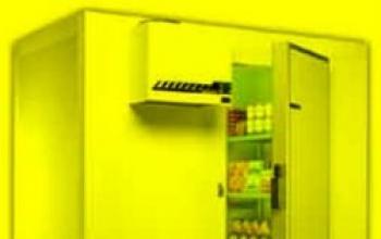 La cella frigorifero n. 17
