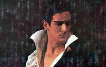 [2] Vittorio Gassman