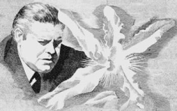 [8] I mille volti di Nero Wolfe…