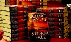 """La fine di Storm"""