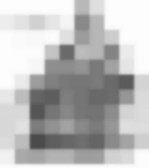 Il giocatore di scacchi automatico, detto Il Turco (ricostruzione)