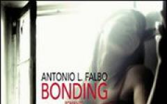 Antonio L. Falbo, Bonding