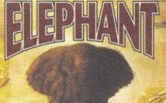 Con la grazia di un elefante