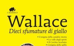 Dieci sfumature di Wallace