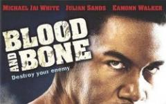 08. Blood and Bone: un ritorno alle origini