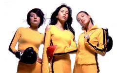 Martial Girls 4. Maggie, Shu e le altre