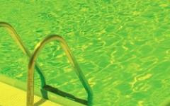 Brivido breve: Oh, mia piscina!