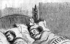 Strani compagni di letto