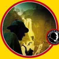 L'enigma Reichenbach