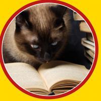 Il gatto che leggeva alla rovescia