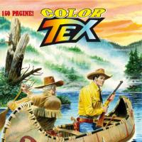 Color Tex numero 2