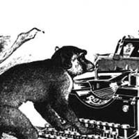 Di scimmie e di dadi